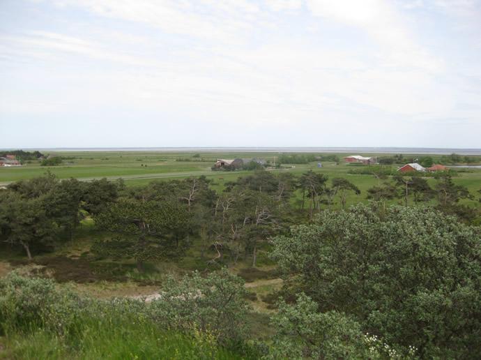 Aussicht in Richtung Küste vom Hjøstberg aus