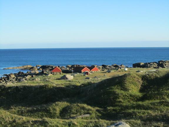 Typisch Norwegen! Küste, Stein, Wiese und Wasser, dazu die Häusschen