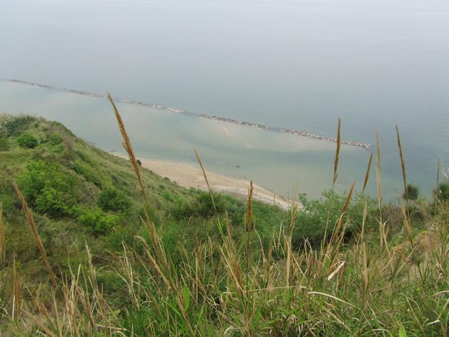 Blick auf den Strand im Nationalpark