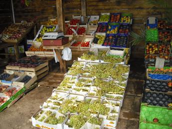 Trauben vom Markt